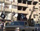 Боевики «Исламского государства» американцам: «Вы — наши цели повсюду»