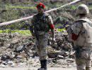 На севере Синая уничтожены 12 боевиков