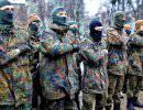 Бойцы карательных батальонов на Майдане потребовали отставки Порошенко