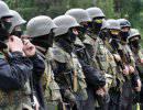 Террористы на службе киевского режима