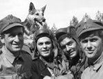 Кто из «4-х танкистов с собакой» Гитлеру служил и  камрадов