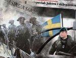 Швеция и Финляндия грезят о нападении на них