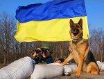 День украинского пограничника — завтра. Будет ли что праздновать?