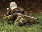 Краткий обзор винтовки M2012 от компании Colt