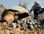 В Севастополе взорвали тринадцать бомб