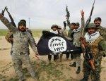 Умеренные террористы из Мосула ищут работу