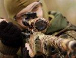 Волчицы пустыни: сирийские вдовы-снайперы начинают охоту на террористов