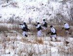 Хроника Донбасса: под Донецком «притихли» ВСУ, в ЛНР минометный огонь