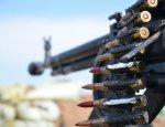 «Украинское сафари на Донбассе»: бумеранг незамедлительно ударит по ВСУ