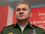 Шойгу: Инженерные войска РФ показали класс в Пальмире и Алеппо