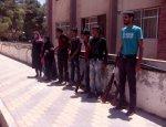 Конец гражданской войны в Сирии: провинция Идлиб просит мира