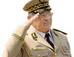 Алжир ставит на красное