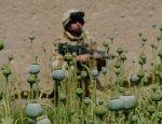 Сражение за столицу наркоторговли завершилось победой «Талибана»