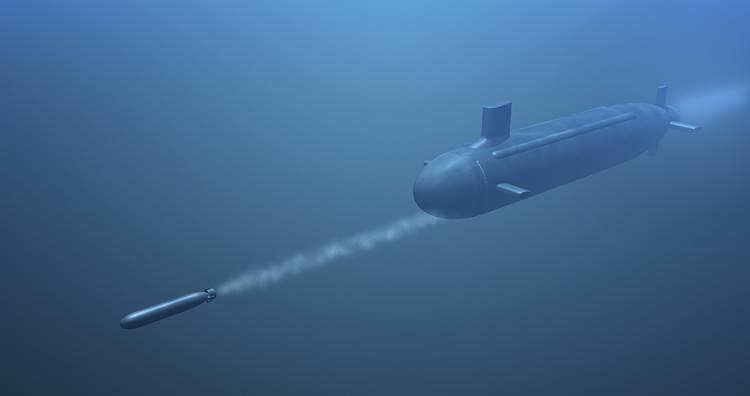 Торпеды-перехватчики для субмарин: Россия предлагает надежную защиту