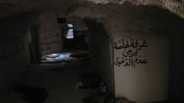 Угроза из подполья: откуда попытаются ударить недобитые боевики в Сирии