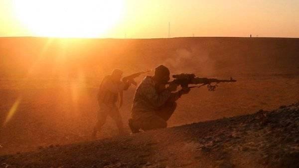 Группа боевиков ИГ была ликвидирована в зоне деэскалации в Сирии