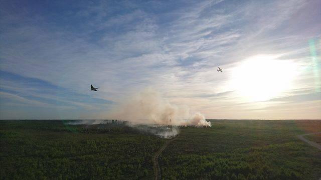 Россия виновата: В Эстонии вторые сутки горит военный полигон