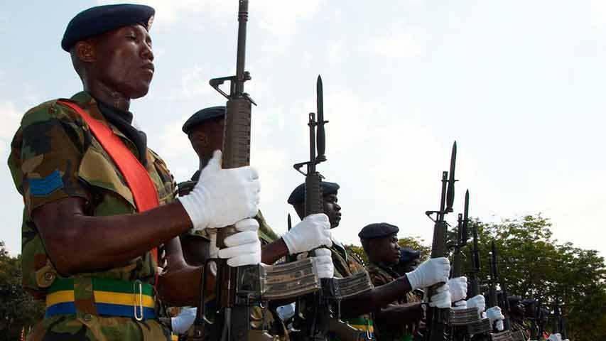 Воевать за три Гвинеи будут только дураки